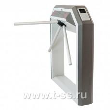 Электронная проходная Carddex STR-04RS
