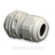 ITelite Cable gland